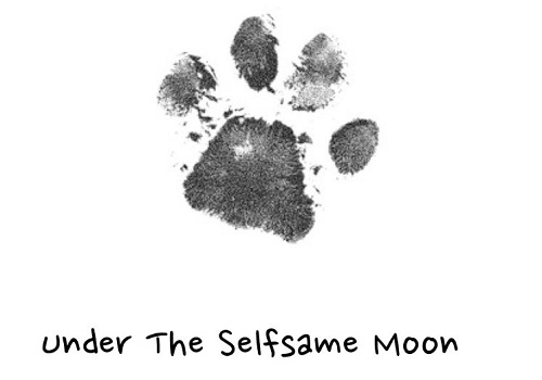Under the Selfsame Moon by The Company